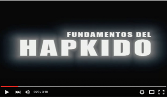 canal youtube hapkido