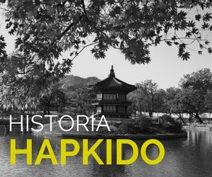 historia del hapkido