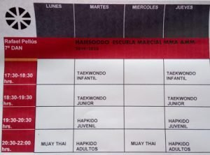 HAPKIDO, MMA, TAEKWONDO INFANTIL y JUVENIL/ HANSOODO ESCUELA MARCIAL 1