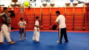 Taekwondo & Hapkido Finestrat 1